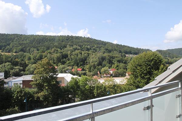 Ausblick auf den Regenberg